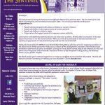 2013-summer-fall-newsletter